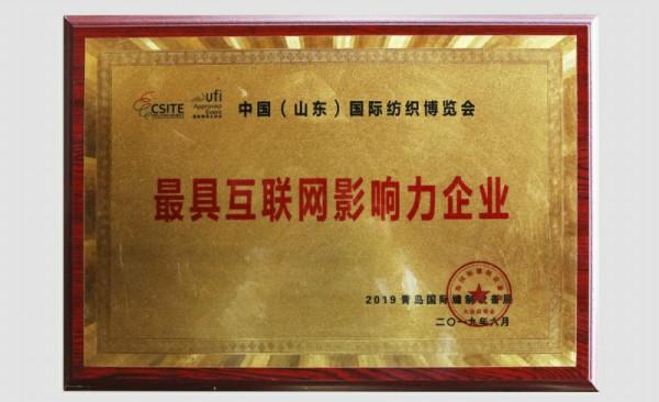 互联网影响力企业奖